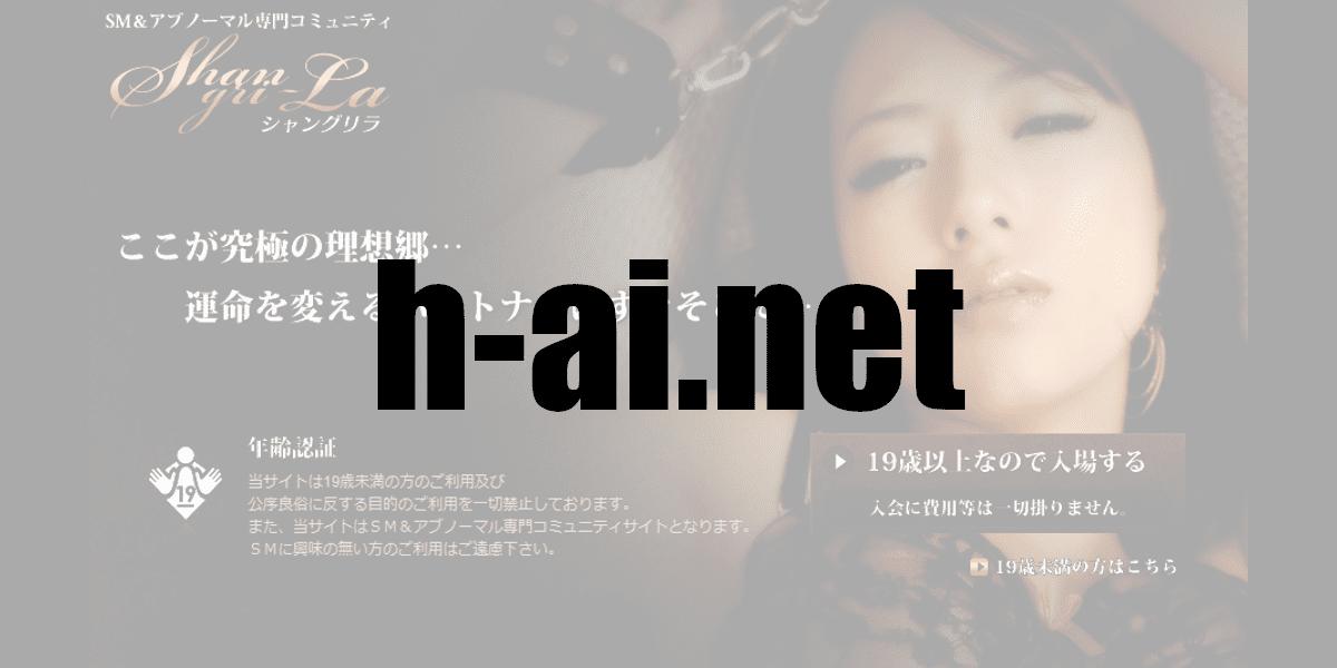 h-ai.net