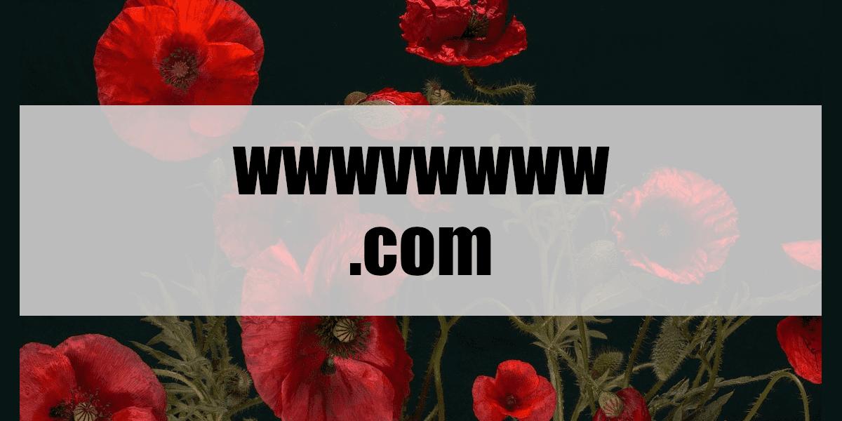 wwwvwwww.com